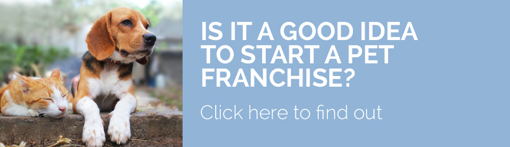 Should I start a franchisee?